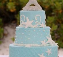 Aqua Florida Beach Wedding