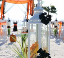 Themed Florida beach weddings