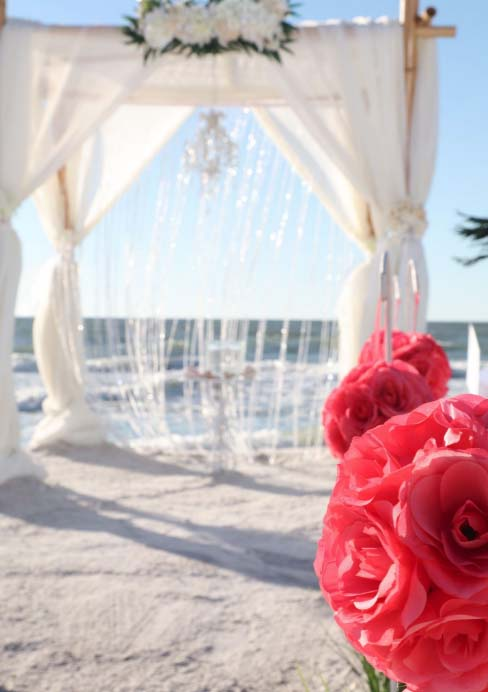 Ready To Plan Your Crystal Florida Beach Wedding