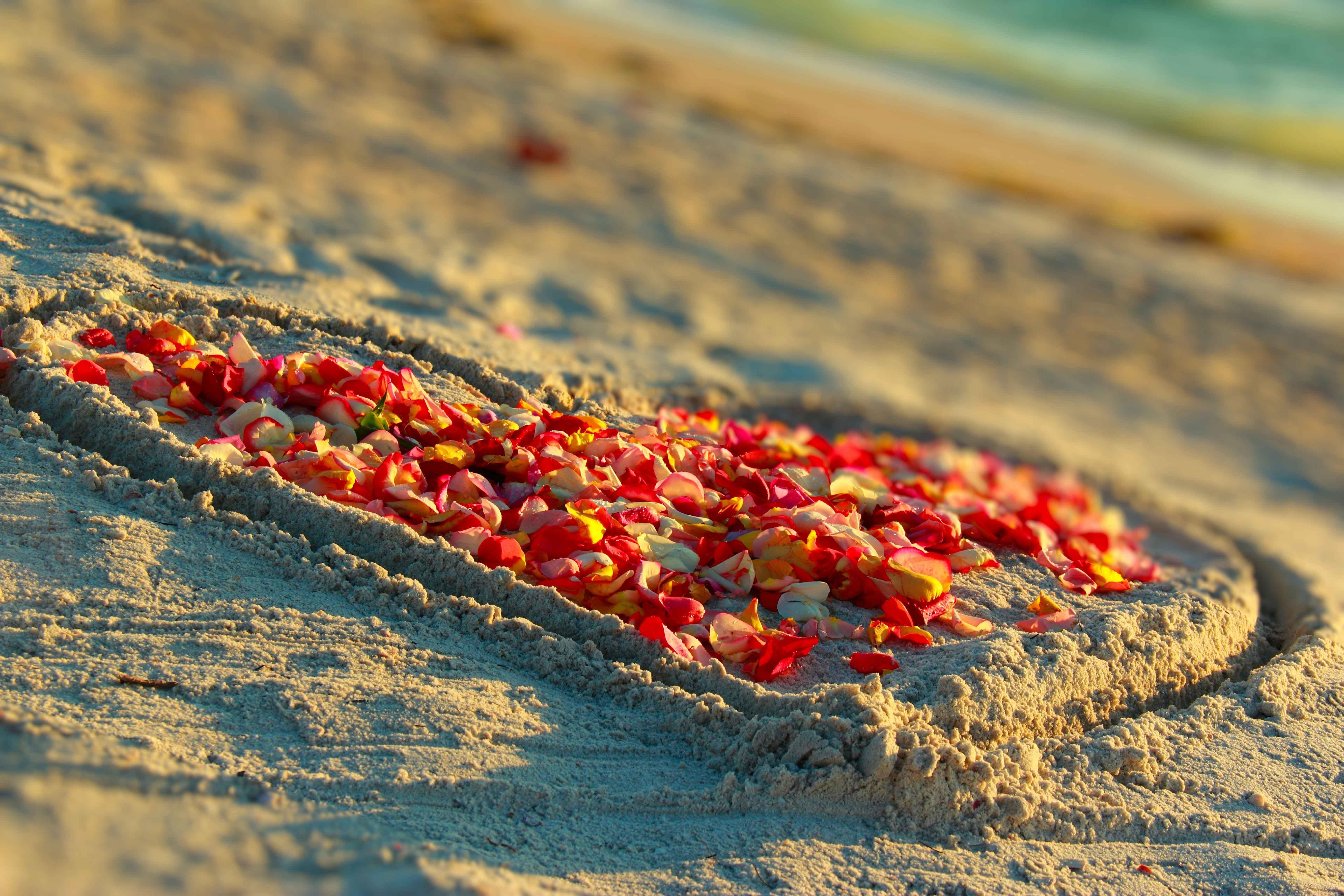 gulf beach heart