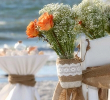 Baby's Breath Wedding theme
