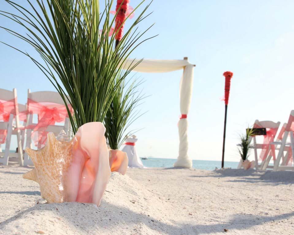Florida Beach Wedding Themes Captivating Coralsuncoast Weddings