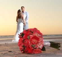Captivating Coral beach wedding theme