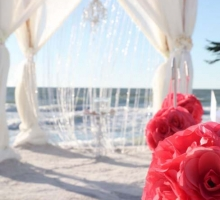 coral swag crystal drape chandelier