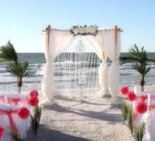 crystal drape chandelier oasis coral