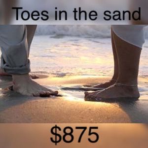 Florida beach weddings toes in the sand wedding package