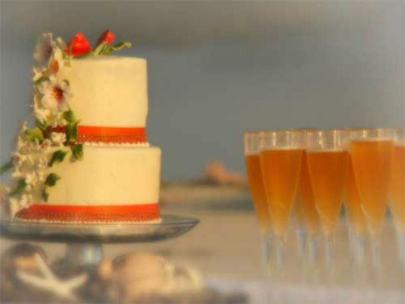 Florida Beach Weddings And Reception Packages Suncoast