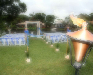 Garden weddings by Suncoast Weddings