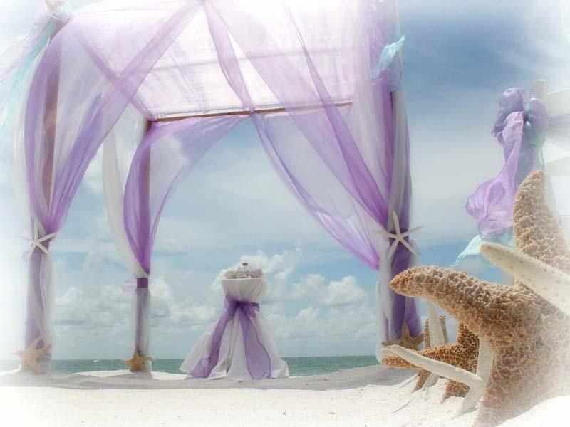 lilac beach wedding theme