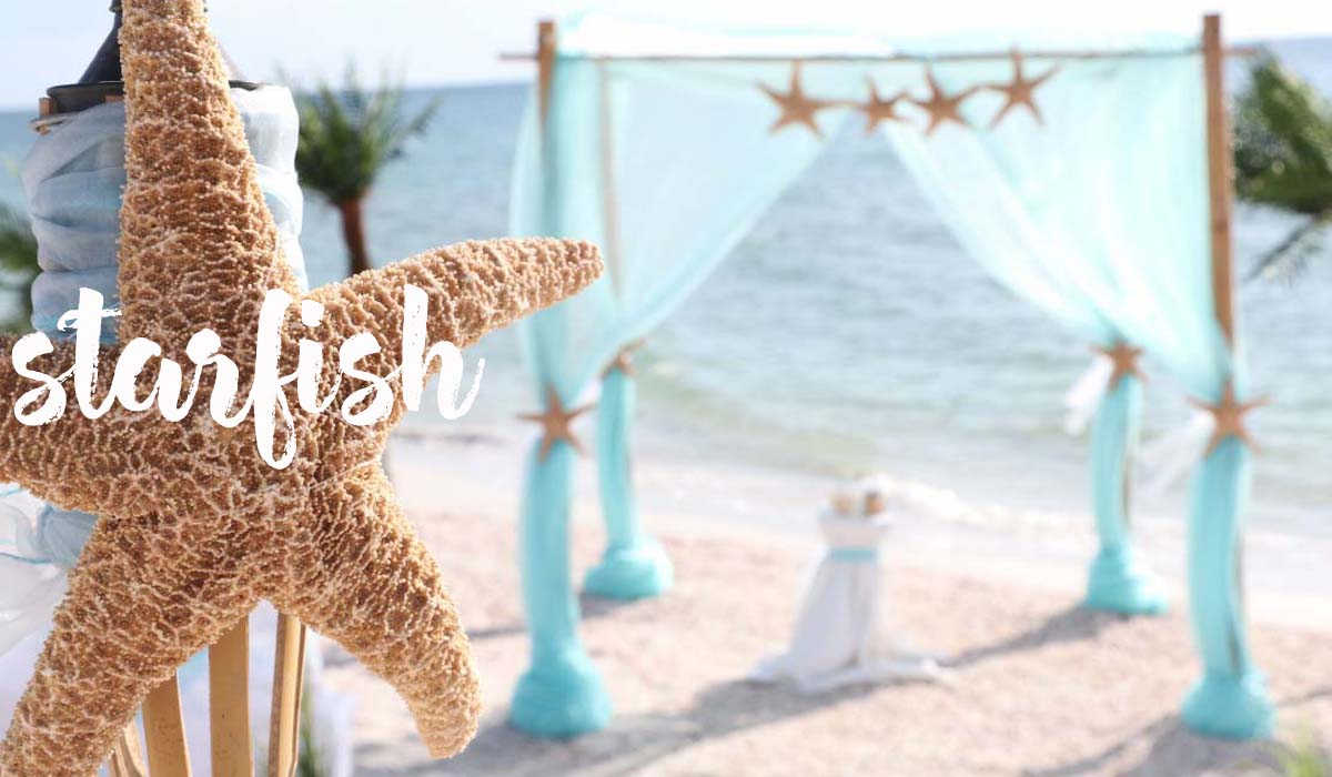 Florida beach wedding themes - starfish