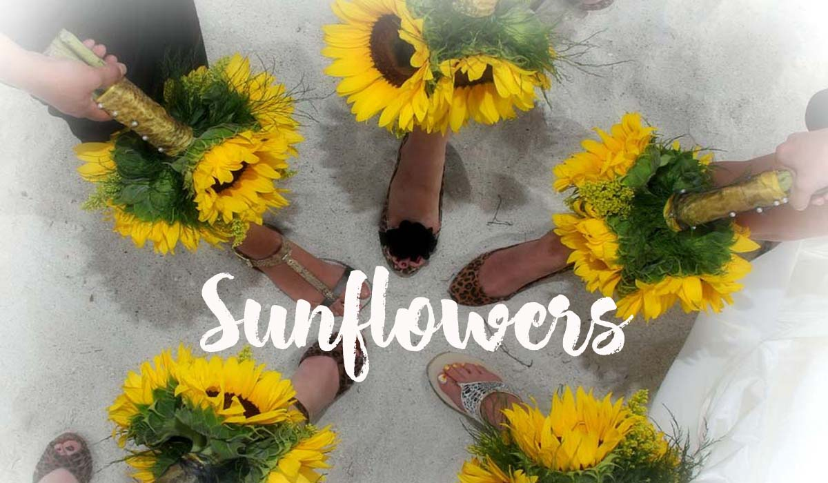 Florida beach wedding themes - sunflowers