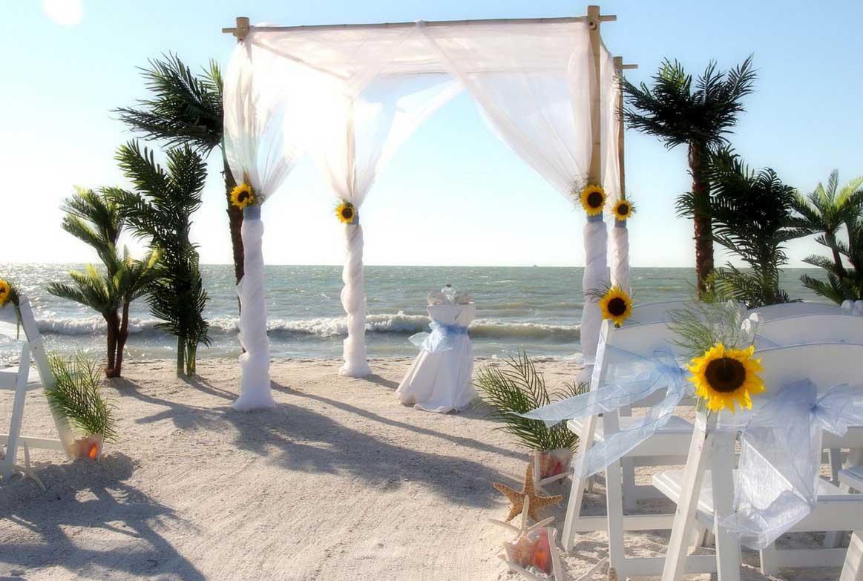 sunflower beach wedding themes - sunflowers