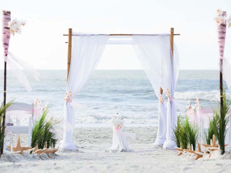 Orchid beach wedding theme