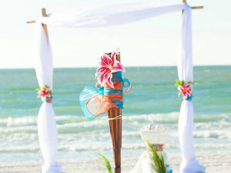 Stargazer lily beach wedding theme