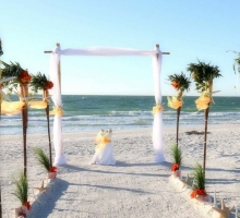 Shades of green for your Florida beach wedding