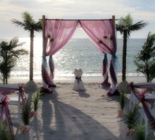 Florida beach wedding themes presented by Suncoast Weddings - Peacock feathers