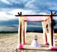 Florida beach wedding themes
