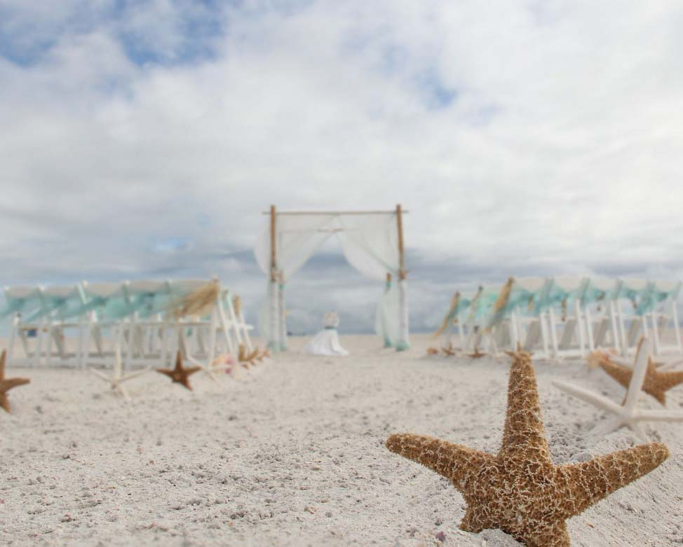 Starfish Themed Beach Weddingsuncoast Weddings