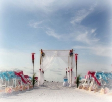 Florida beach wedding themes - Stargazer Lilies